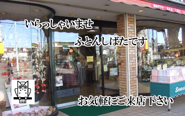 shibata_top